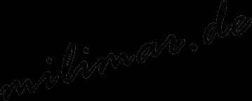 "Sven Richter - Elektro Katamaran ""milimar"""
